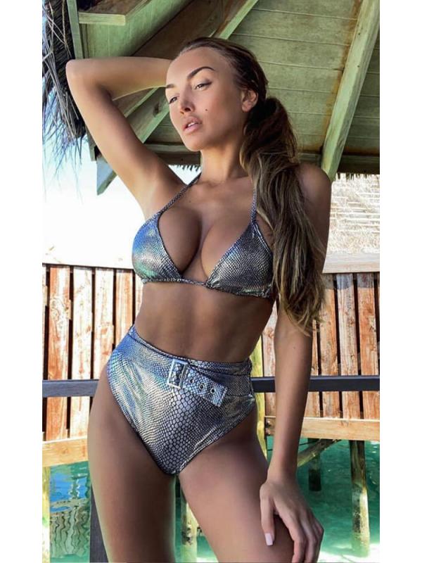 Silver Metallic High Waisted Bikini Set